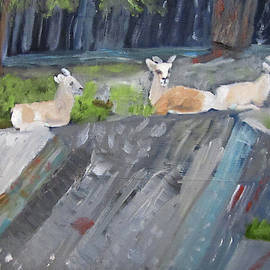 Resting by Linda Feinberg