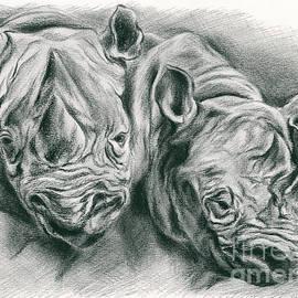 Rhinoceros Study by MM Anderson