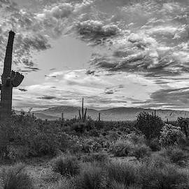 Rincon Mountains And Clouds Black And White, Tucson, Az by Chance Kafka