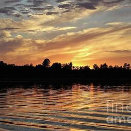 Ripples on the water by Ann Brown