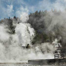Rising Steam by Ann Skelton