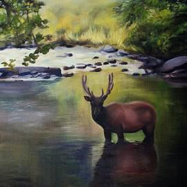 River Elk by Kelly Gross