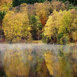 River Tummel Autumn Trees by Dave Bowman