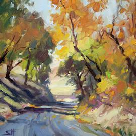 Roadside Attraction by Steve Henderson