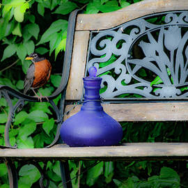 Robin on the Garden Bench by Diane Lindon Coy
