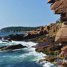 Rocky Maine Coast by Dale Kohler
