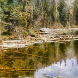Rocky Mountain Lake With Lily Pads by Michelle Calkins