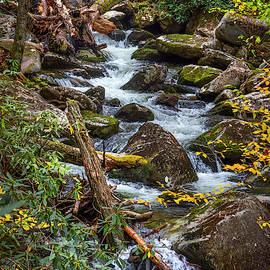Rocky Stream In Autumn by Debra and Dave Vanderlaan