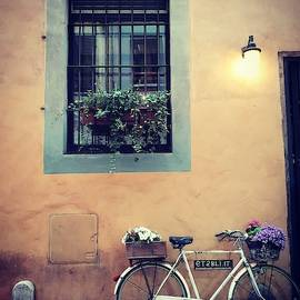The Roman Bike by Andrea Whitaker