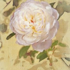 Rose Bo by Diane Lindon Coy