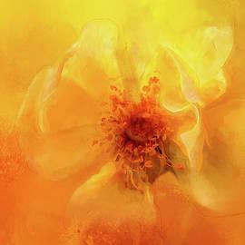 Rose Center by Terry Davis