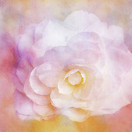 Rose Impression Painting by Terry Davis