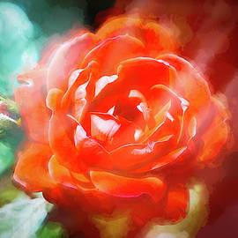 Rose Nebula by Jim Love