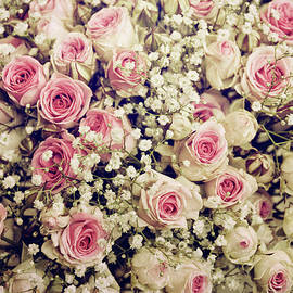 Rose Nostaglia by Claudia Moeckel