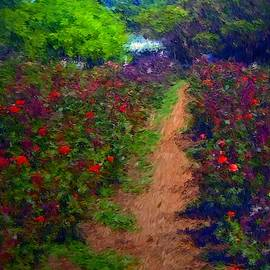 Rose Path by Michael Durst