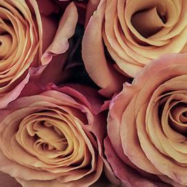 Roses for Love by Ann Skrobot