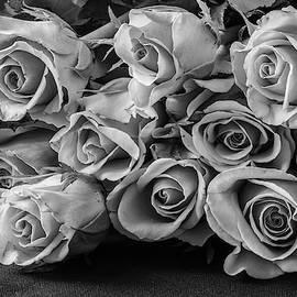 Roses I Bw by David Gordon