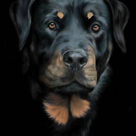 Rottwailer Dog portrait by Monique Lap Art