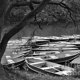 Rowboats at Rest - Central Park New York by Miriam Danar