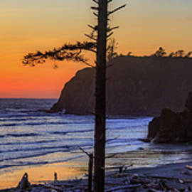 Ruby Beach Sunset 16 by Mike Penney