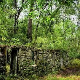 Doug Swanson - Ruin in the Woods