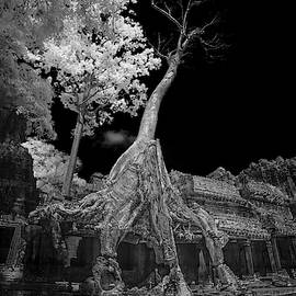 Ruins of Preak Khan in Cambodia in black and white infrared  by Karen Foley