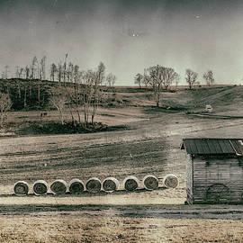 Rural Mood by Jim Love