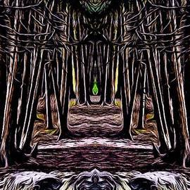 Sacred Grove by Aranka Marin