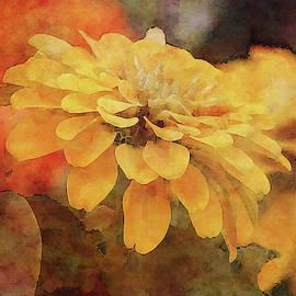 Saffron Petals 7228 Idp_2 by Steven Ward