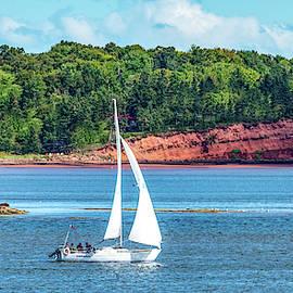 Sail Away by Marcy Wielfaert
