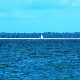 Sail by Mary Ann Artz