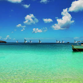Sailboat Races In Anguilla 2018 by Ola Allen