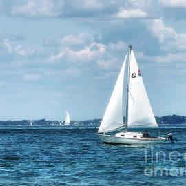 Sailing Along The Tisbury Coast by Mark Miller