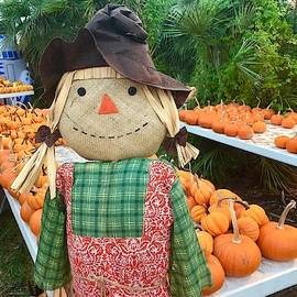Sally Scarecrow Guarding The Pumpkins by Denise Mazzocco