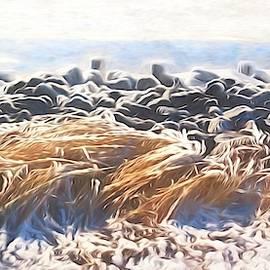 Karen Silvestri - Salt and Ice