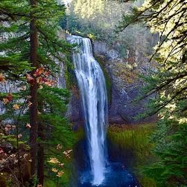 Salt Creek Falls in Autumn by Dana Hardy
