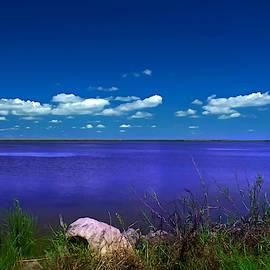 Salt Lake 2 by Robert Brown