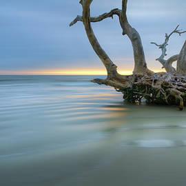 Salty Sea Dreamscape by Debra and Dave Vanderlaan