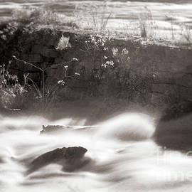 Saluda Rapids Infrared-2 by Charles Hite