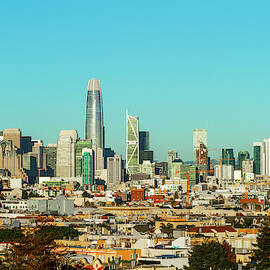 San Francisco Financial District From Dolores Park by Bonnie Follett