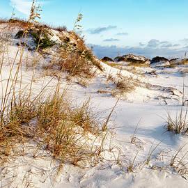 Sand Dune by Bill Chambers