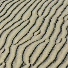 Sand Pattern #1 by Jerry Griffin