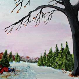 Jack G Brauer - Santas Helper