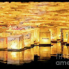 Sarasota Water Lantern Festival by Liesl Walsh