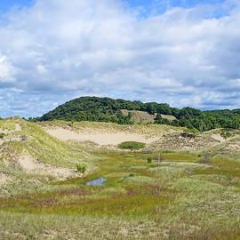 Saugatuck Harbor Interdunal Landscape by Kathi Mirto
