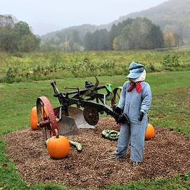 Scarecrow at Harvest Time by Carol McGrath
