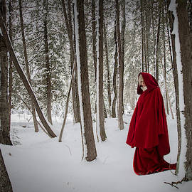 Scarlet Cloak 1 by Tim Beebe