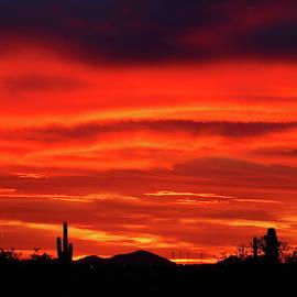Sky in Fire by Atiqur Rahman