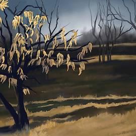 Jeanne Cutler - Scraps of Another Season