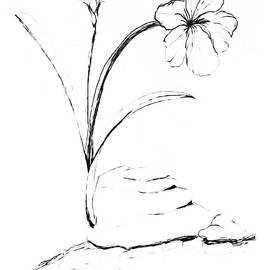 Sea Side Wild Flower PAINT MY SKETCH by Delynn Addams